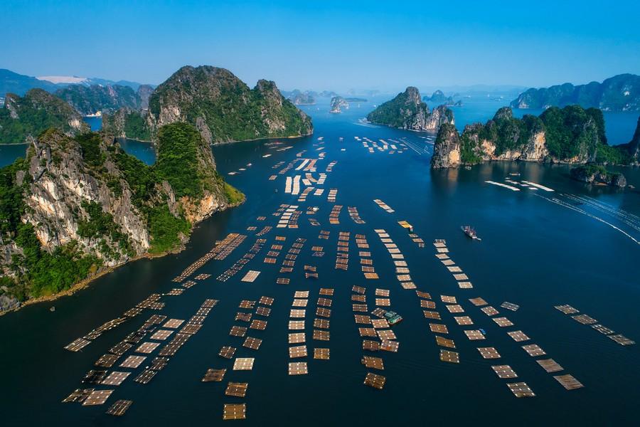 Bai Tu Long Bay, Halong